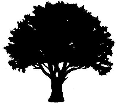 04 tree