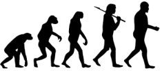 05 Evolution of man